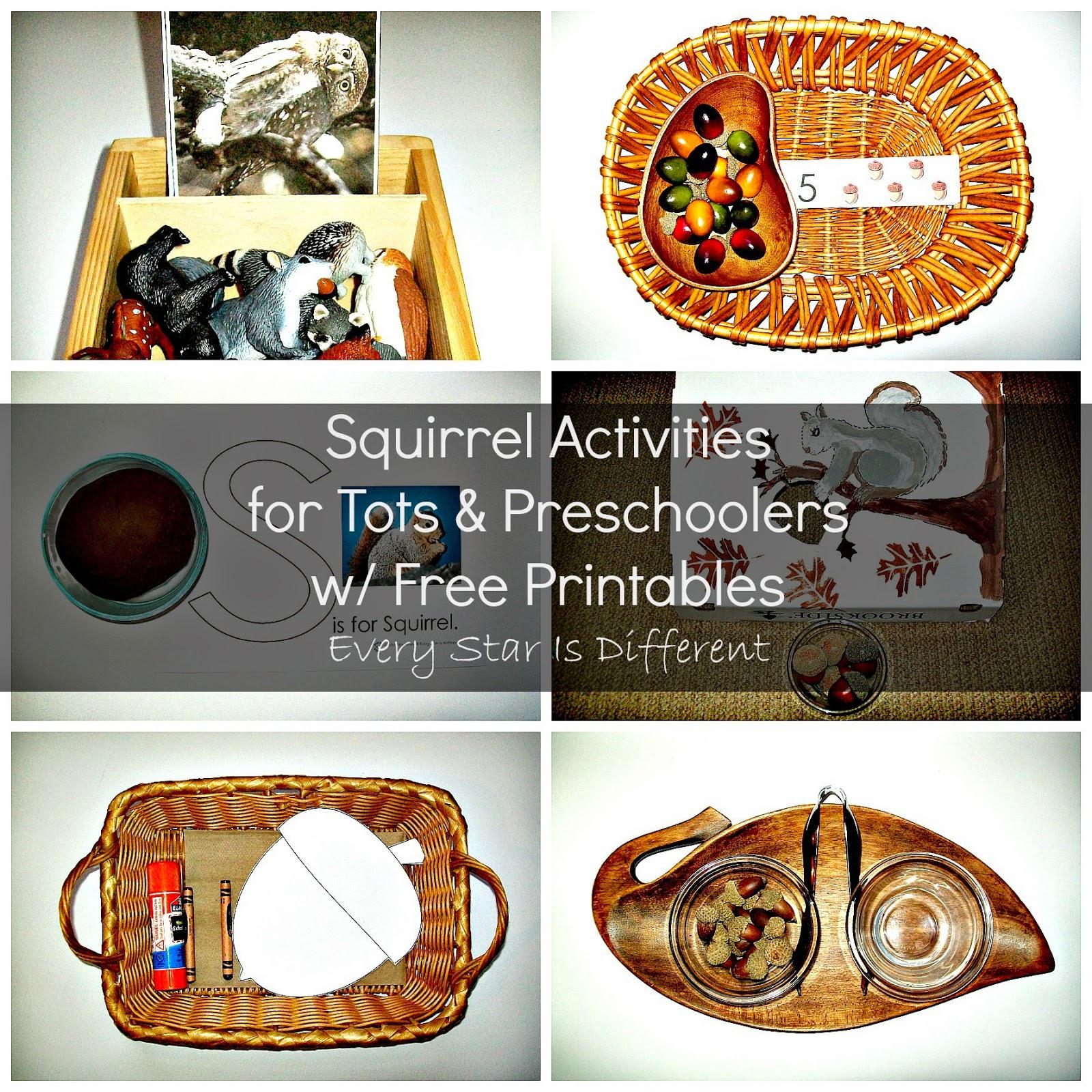 Squirrel Activities for Tots