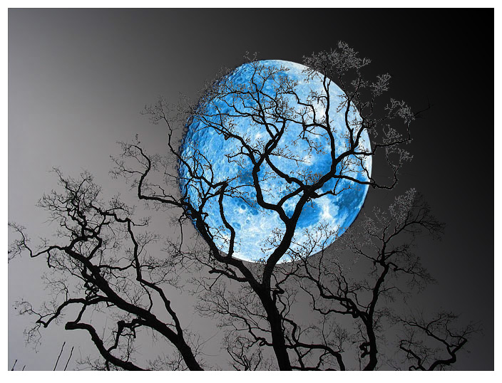 Image result for आँगन में चन्द्रमा