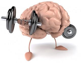 meningkatkan kecerdasan dan meningkatkan daya ingat tentu saja dibutuhkan proses yang tid 20 Cara Sederhana Meningkatkan IQ & Kecerdasan