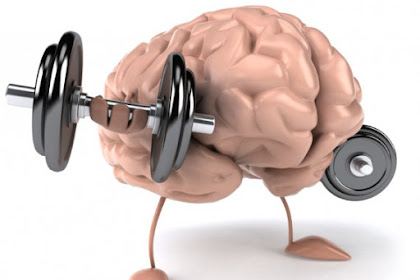 20 Cara Sederhana Meningkatkan IQ & Kecerdasan