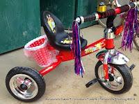 Sepeda Roda Tiga BMX Holly 301 Keranjang