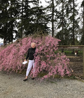 Beth - Springtime in the Pacific NW