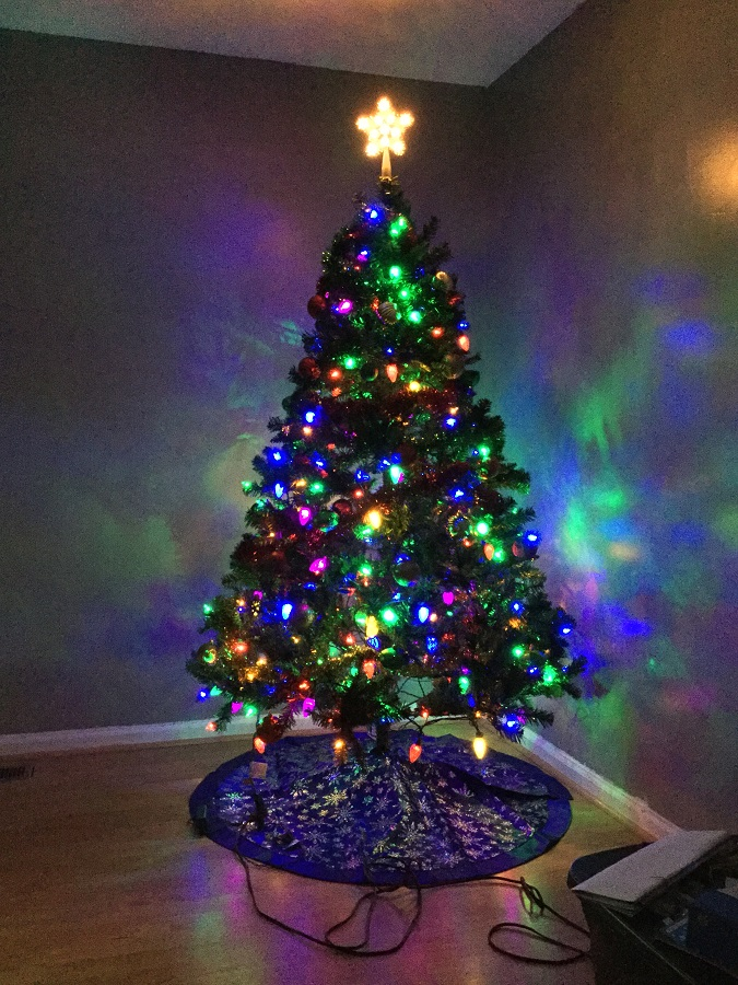 Neko Random My Favorite Photos Our Christmas Tree 2016