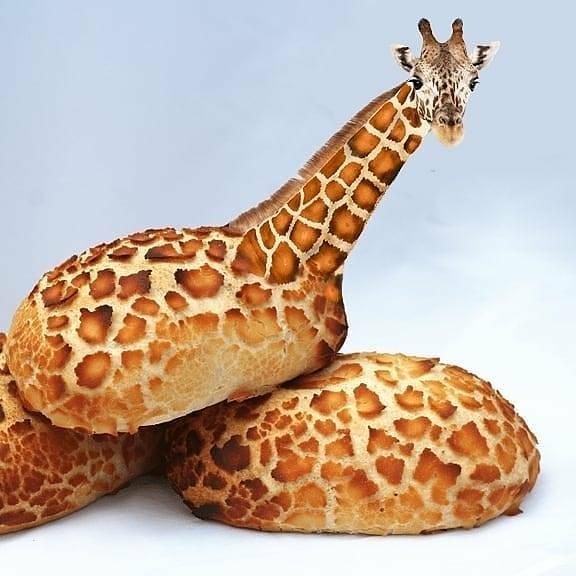 Giraff-bun - photo manipulation