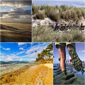 Kepulauan Frisian