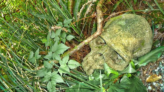 Skulls among the shrubs...
