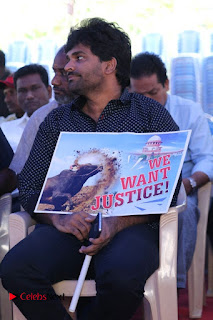 Tamil Film Industry Jallikattu Support Protest of Jallikattu  0005.jpg