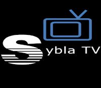 sybla_logo_ityunit