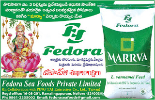 FEDORA SEA FOODS PRIVATE LIMITED Nellore