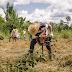 Projeto Plantar Rondônia apoiará a recuperação de mais de 3000 hectares em propriedades da agricultura familiar