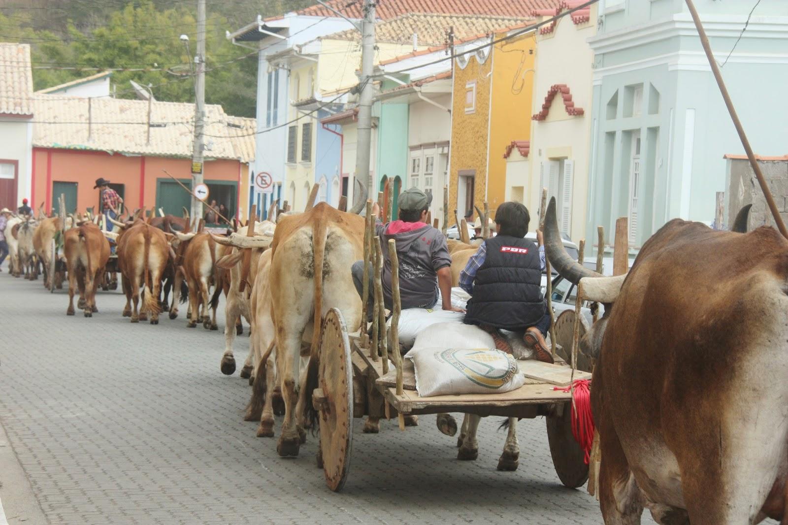 Desfile de carros de boi, na Festa da Comida Caipira em São Luiz do Paraitinga