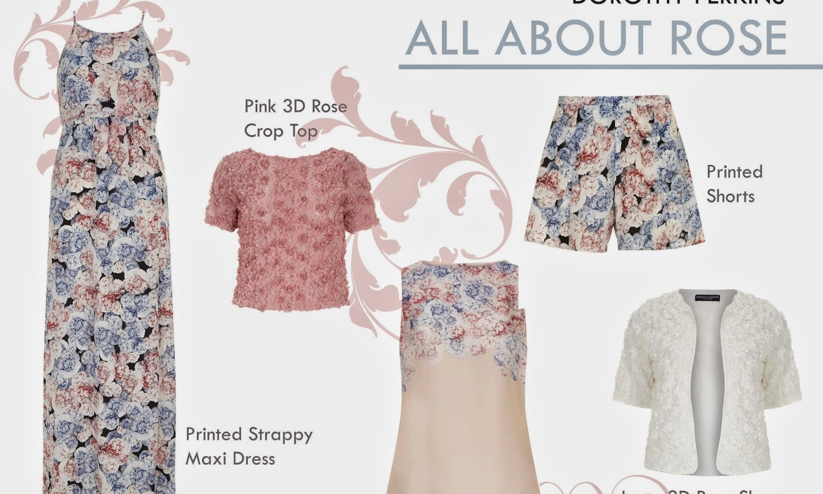 dorothy perkins all about rose