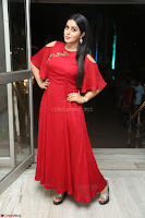 Poorna in Maroon Dress at Rakshasi movie Press meet Cute Pics ~  Exclusive 33.JPG