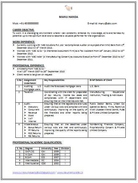 resume example auditor