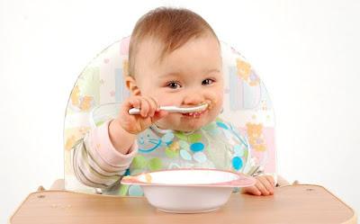 Menu Foods Baby 15 Months