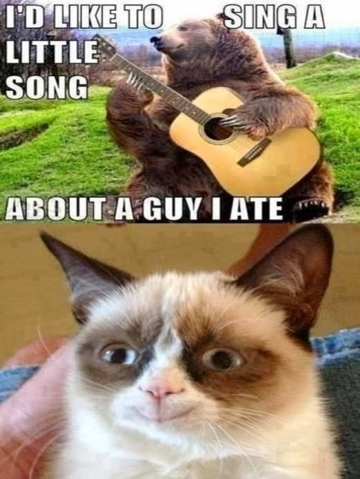 Jimmyfungus Com The Best Of Grumpy Cat The Best Grumpy