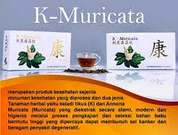 obat diabetes melitus herbal