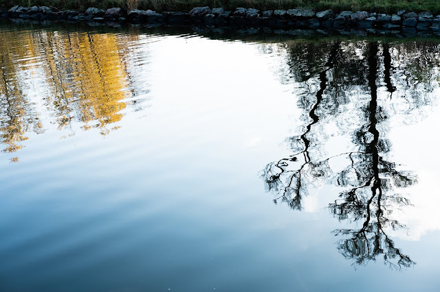 otoño Estocolmo Djurgardsbrunn