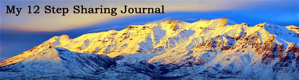 My 12 Step LDS Sharing Journal