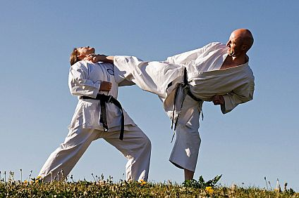 Most used martial art styles ~ The Martial Art