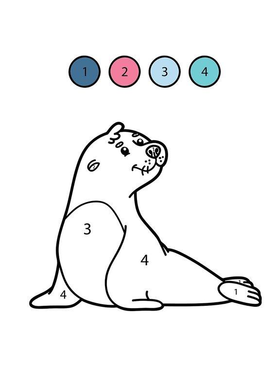 Hình tô màu con hải cẩu theo số