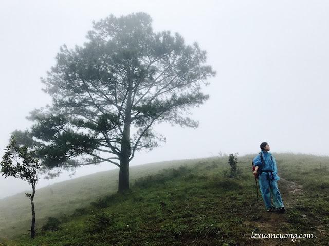 Trekking%2BTa%2BNang%2BPhan%2BDung%2B12 - Cung đường trekking Tà Năng - Phan Dũng ngày trở lại, mùa mưa 2016
