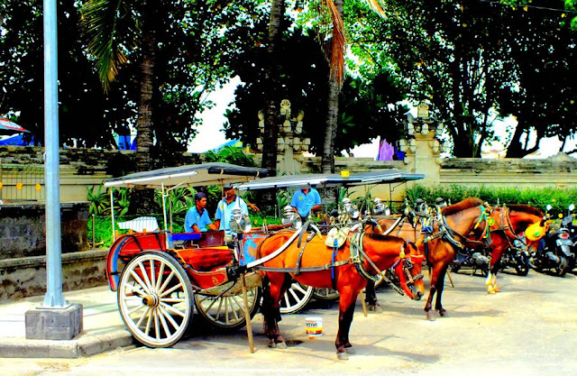 [DELMAN]  Horse Carts Near Kuta Beach Bali
