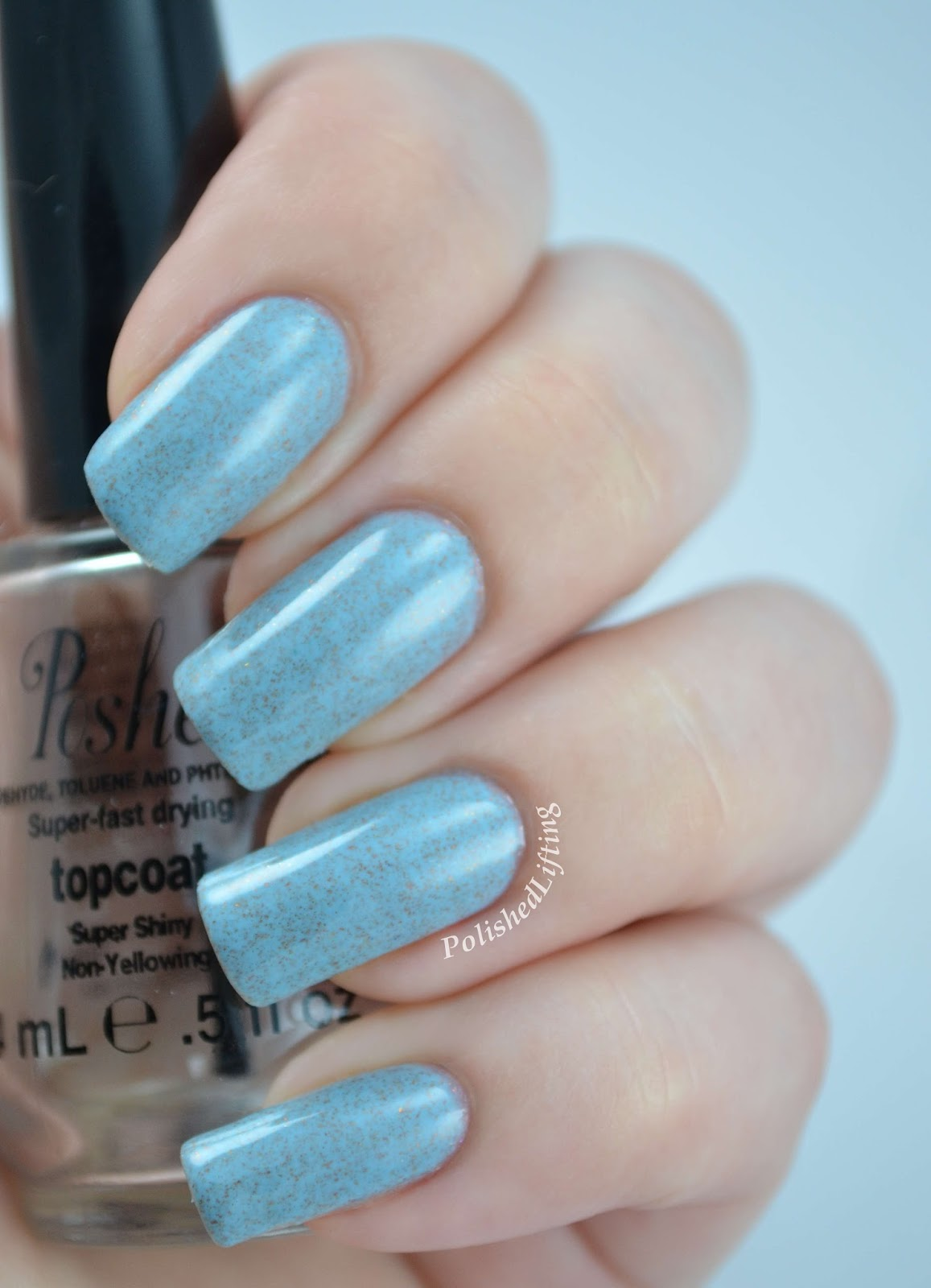 Reverie Nail Lacquer Agave Summer 2014