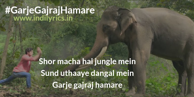 Garje Gajraj Hamare   Vidyut Jammwal   Junglee   Pics   Quotes