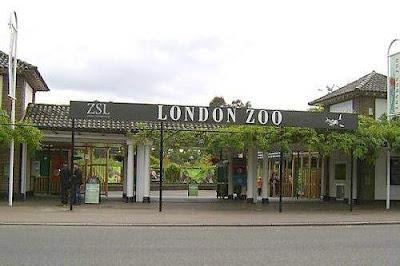 Kebun Binatang Lomdon