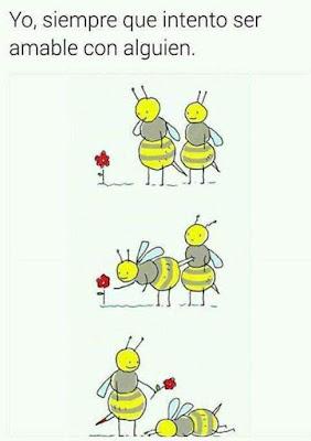 Yo, siempre que intento ser amable con alguien, abejas, flores