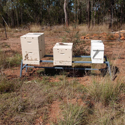 eight acres:Getting started with Beekeeping: what equipment do I need?