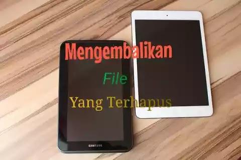 Cara Gampang Mengembalikan File / Data Yang Terhapus Di Hp Android (Video, Musik/Lagu/Mp3, Foto Dan Data Penting Lainnya)