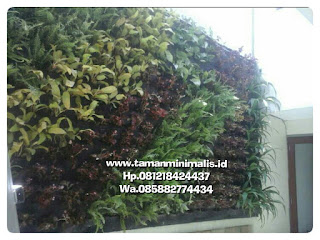Harga pembuatan vertical garden