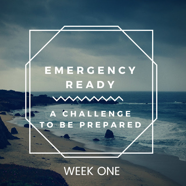 This series will help you become emergency-ready. This week's post covers preparing for an evacuation.