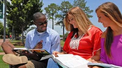 Deskripsi Jurusan Pertanian dan Peternakan di Perguruan Tinggi