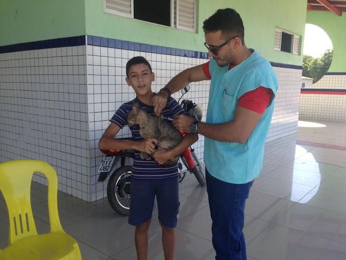 Em Santa Quitéria, prefeitura imuniza quase 5 mil animais durante campanha antirrábica