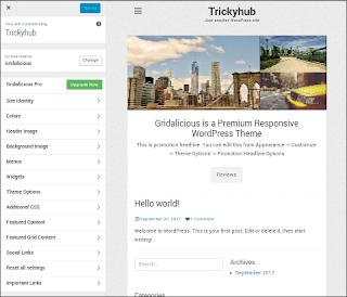 Wordpress theme customize option