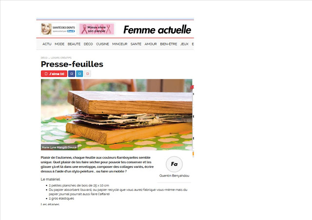 http://www.femmeactuelle.fr/deco/loisirs-creatifs/presse-feuilles-24153
