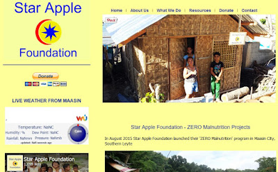 http://www.starapple.ph/index.html