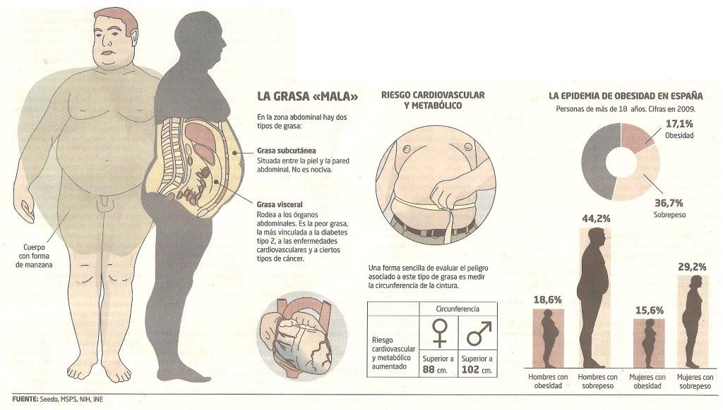 grasa visceral en hombres