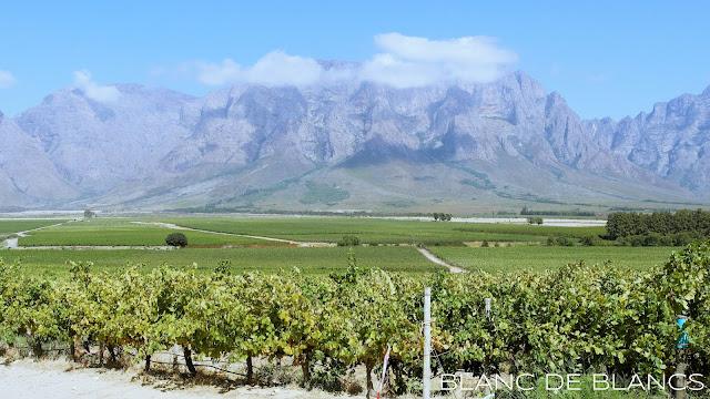 Slanghoek Valley - www.blancdeblancs.fi