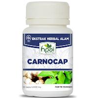 carnocap hpai - www.infojagakesehatan.blogspot.co.id - isman