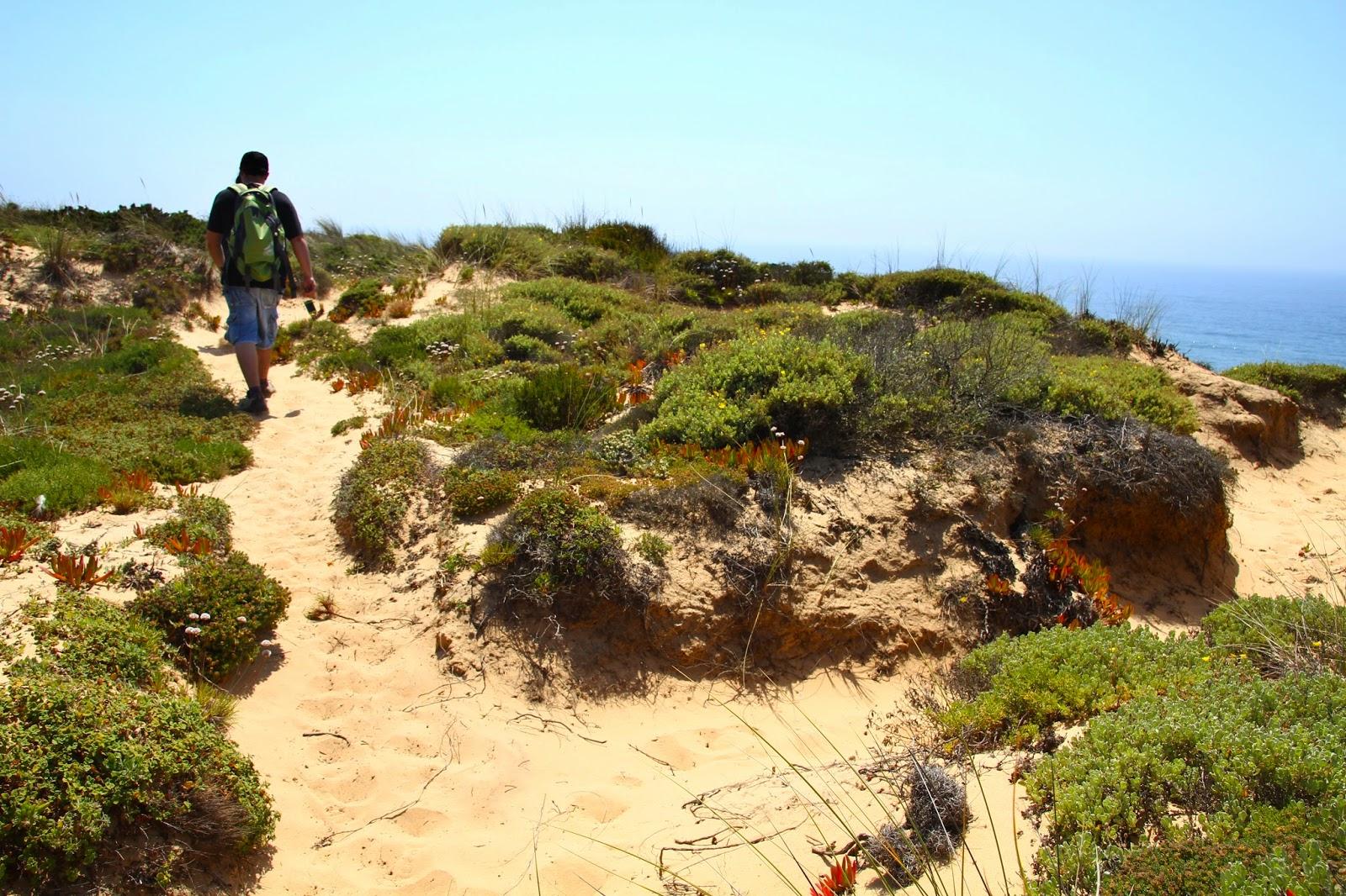 Na Rota Vicentina, o Trilho dos Pescadores entre a Zambujeira do Mar e Odeceixe | Portugal
