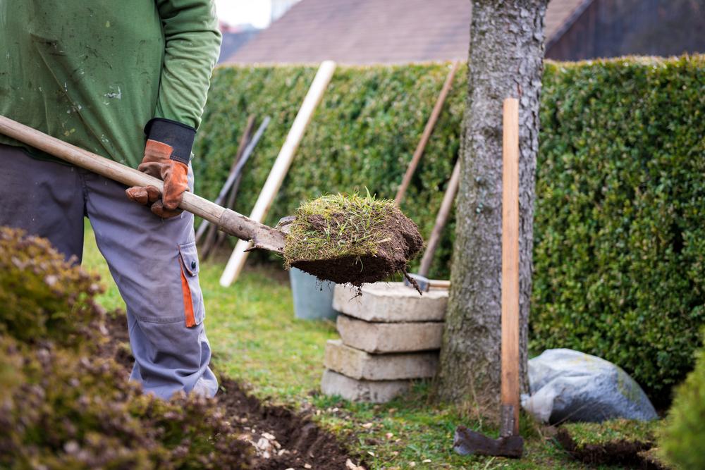 Goedkoop Tuin Aanleggen : Kosten tuinaanleg goedkoop tuin aanleggen