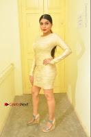 Actress Pooja Roshan Stills in Golden Short Dress at Box Movie Audio Launch  0001.JPG