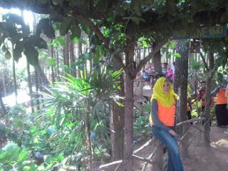 Gapura Taman Bunga di Hutan Pinus Precet, Wagir, Malang