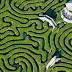 Inteligência artificial supera humanos na hora de escolher novos caminhos