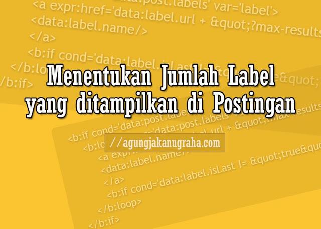 Menentukan Jumlah Label yang ditampilkan di Postingan