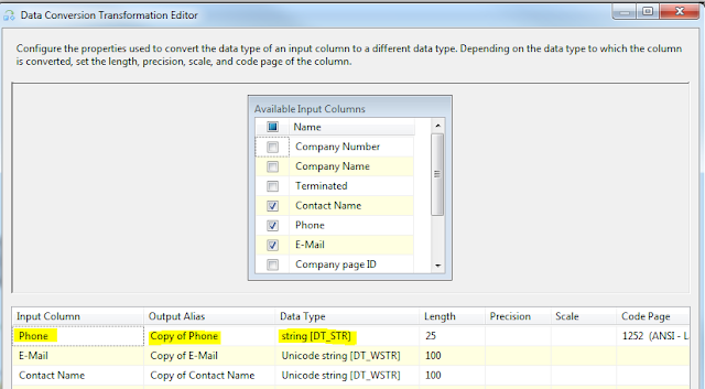 Web Snippets: Data conversion in SSIS package
